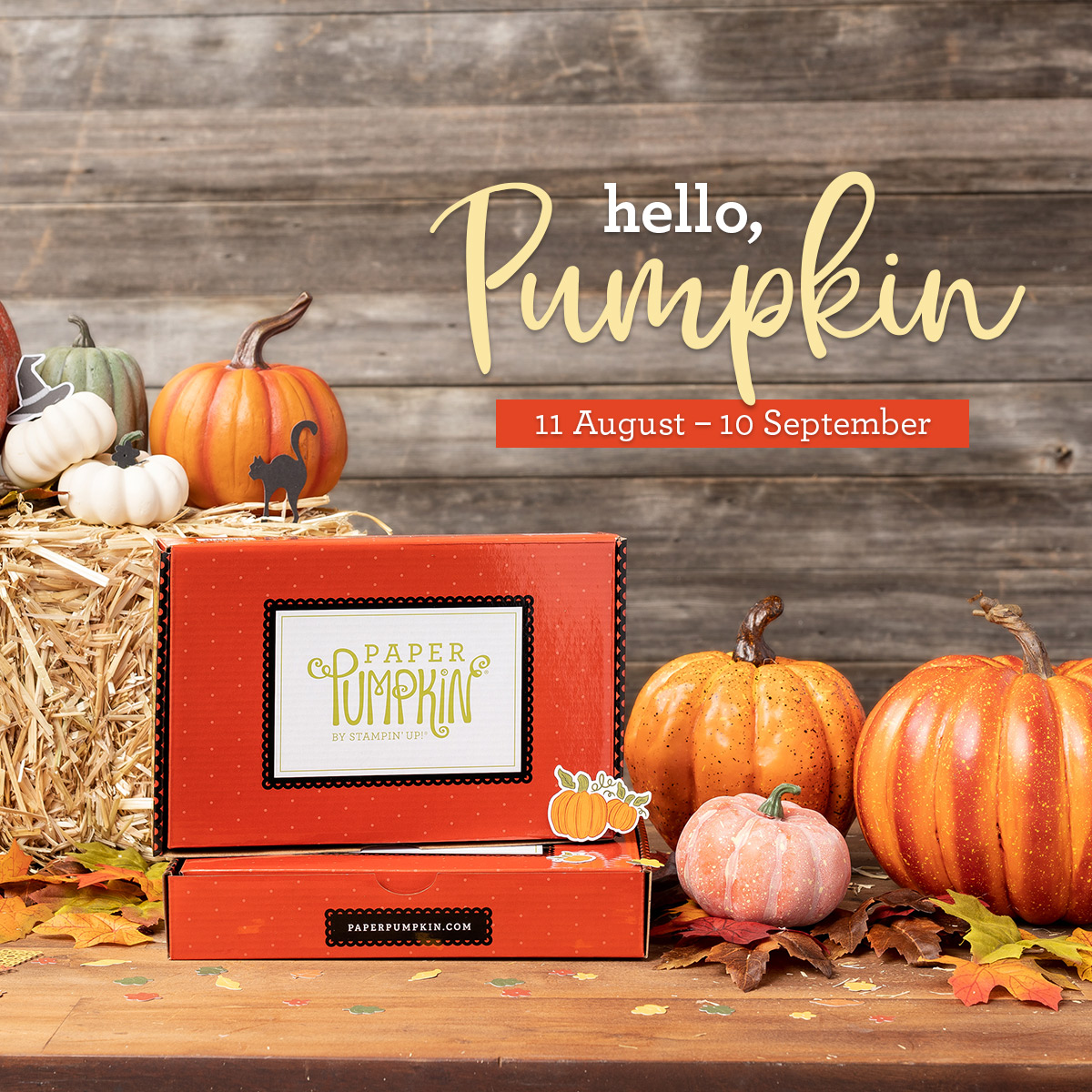 Hello Pumpkin September Kit
